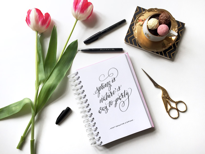 Handlettering mit Frühlingszitat: Spring is nature's way to party!