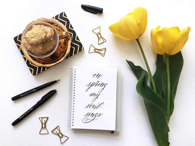 Kalligraphie mit Spruch zum Frühling: In spring my soul sings