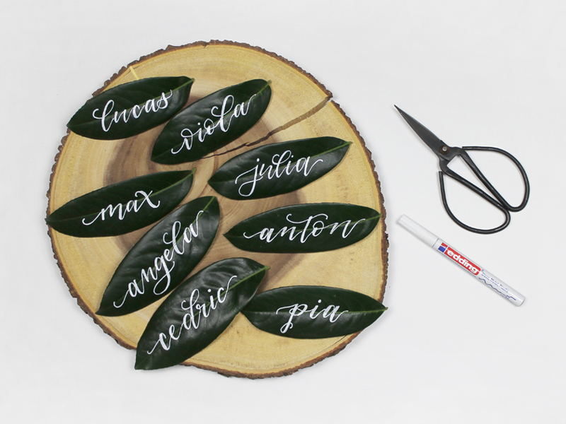 Kalligraphie auf einem Pflanzenblatt vom Kirschlorbeer