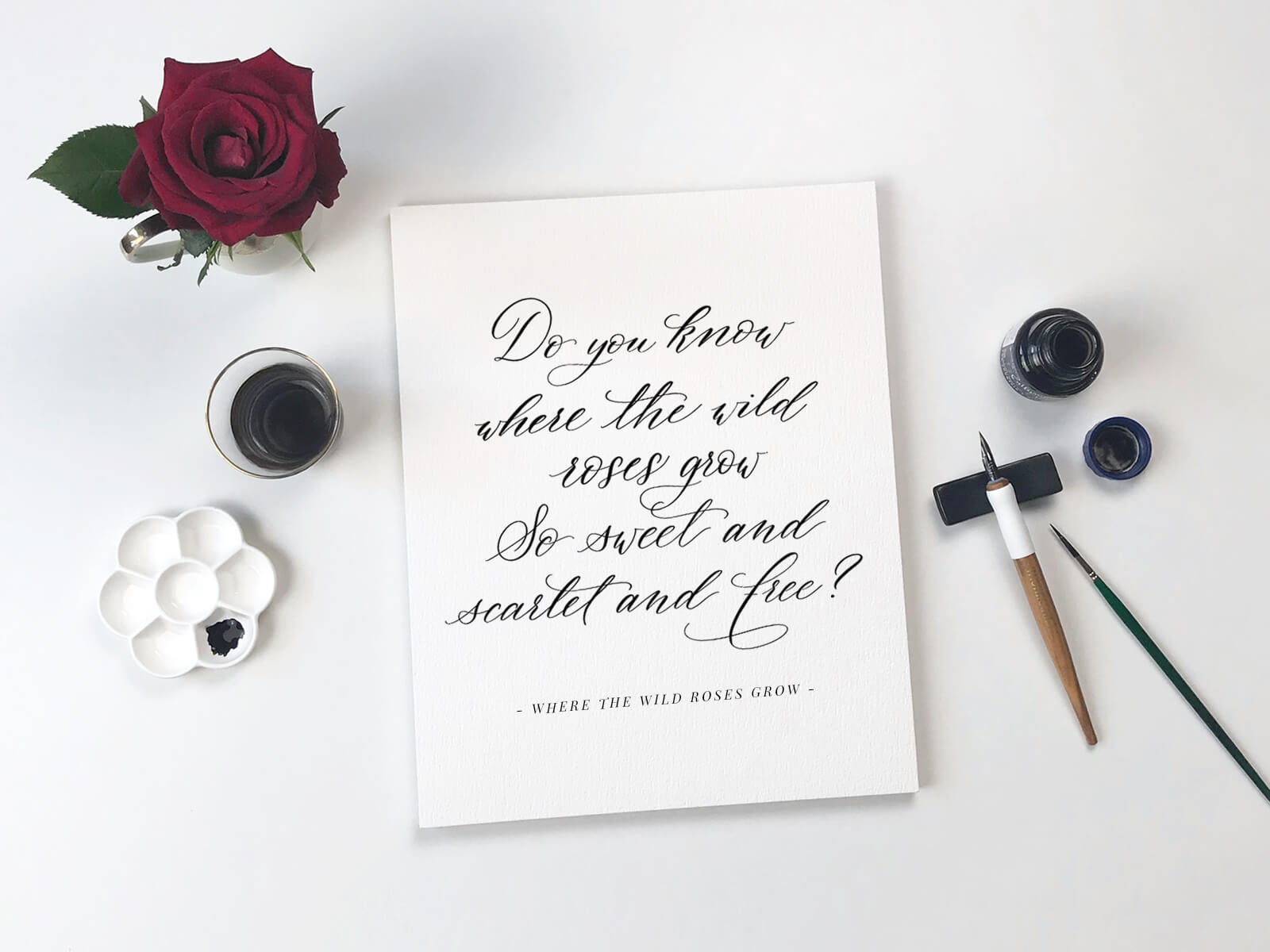 Kalligraphie mit Songtext von Nick Cave: Do you know where the wild roses grow?